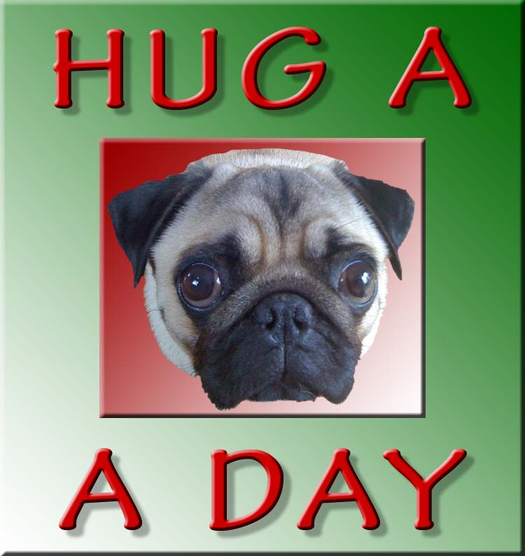 Hug A Pug A Day - and keep the doctor away